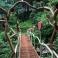 장흥 숲길